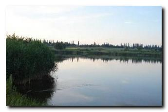 Платные водоемы. Донецкая обл. Покровский район