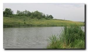 Платные водоемы. Харьковская обл. Харьковский район
