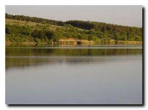 Платные водоемы. Донецкая область