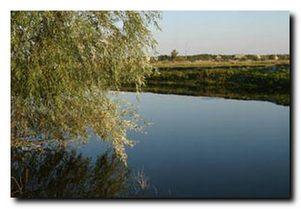 Платные водоемы. Херсонская обл. Горностаевский район