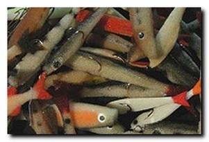 Поролоновая рыбка - вопросы и ответы