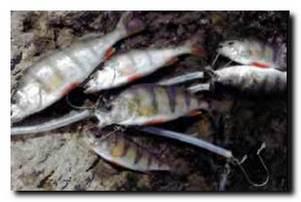 Изготовление кукана для рыбы